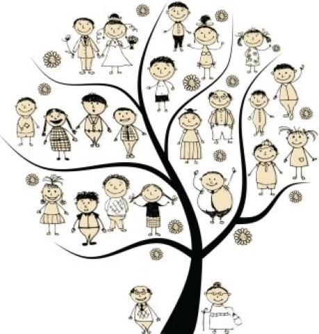 facilitator-constelatii-de-familie (6)